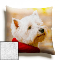 24inch Single Image Faux Suede Square Cushion