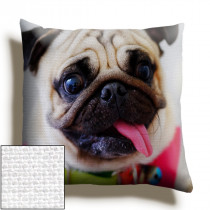 24inch Single Image Canvas Square Cushion
